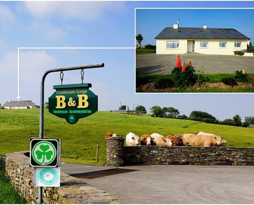Coolbawn Lodge